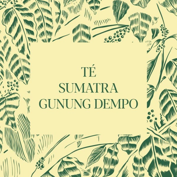 Té Sumatra, Gunung Dempo