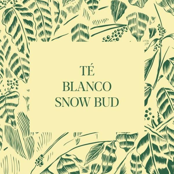 Té Snow Bud (té blanco)